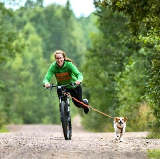 Dryland Mushing Dog Scooter Kickbike